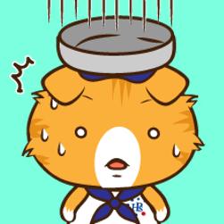 Cat senior
