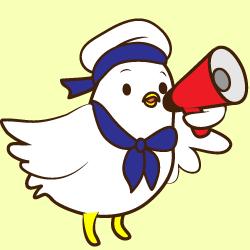 Senior Seagull